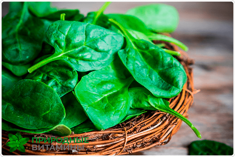 зелёный шпинат