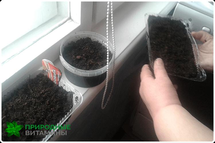 подготовка для растений
